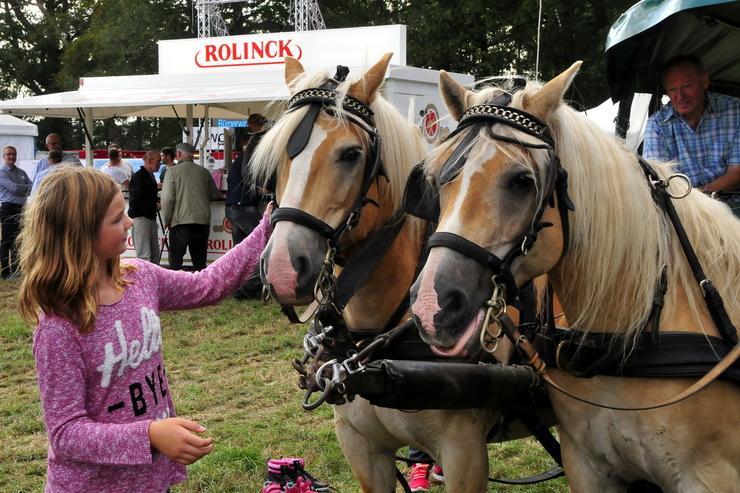 buergerwindfest-branchentreff-163